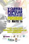 cartel carrera pinseque2016